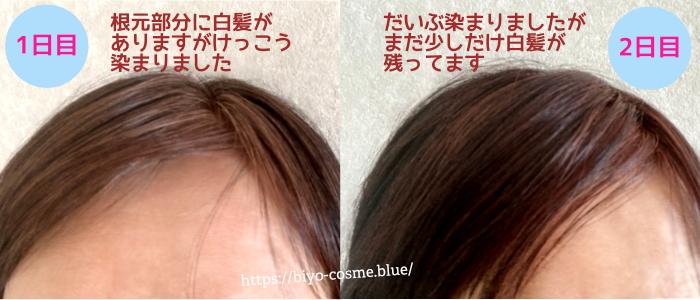 KURO使用中の1日目と2日目の画像