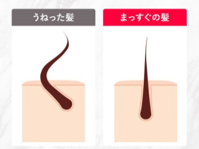 うねった髪とまっすぐの髪のイメージ画像